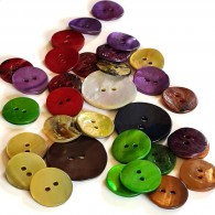 2-Hole Shell Button